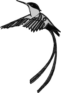 The Hummingbird Flash Fiction Prize